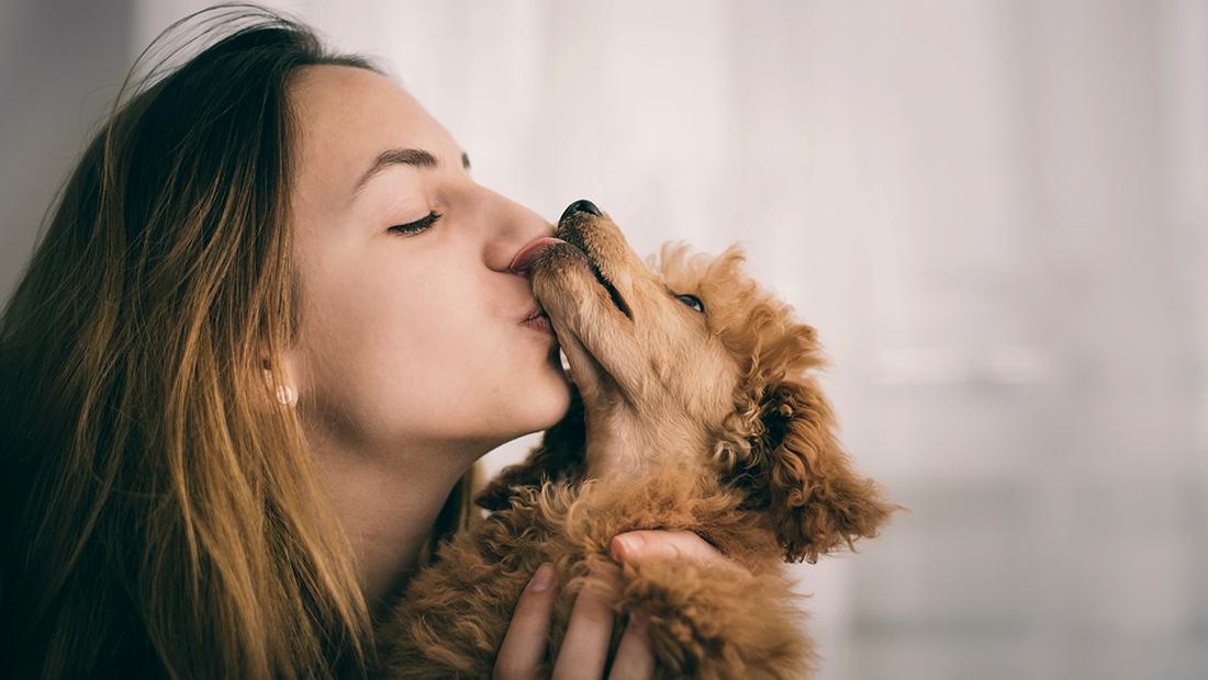 dueño besando a su perro