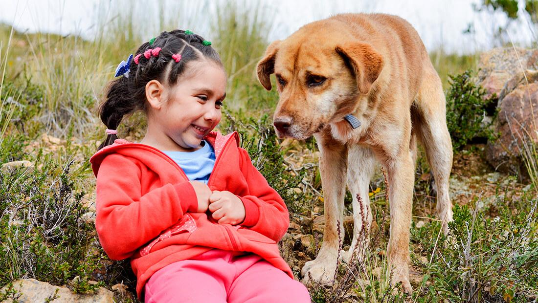 niña jugando con perro