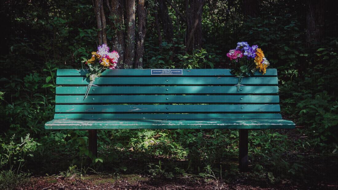 banca de parque con flores