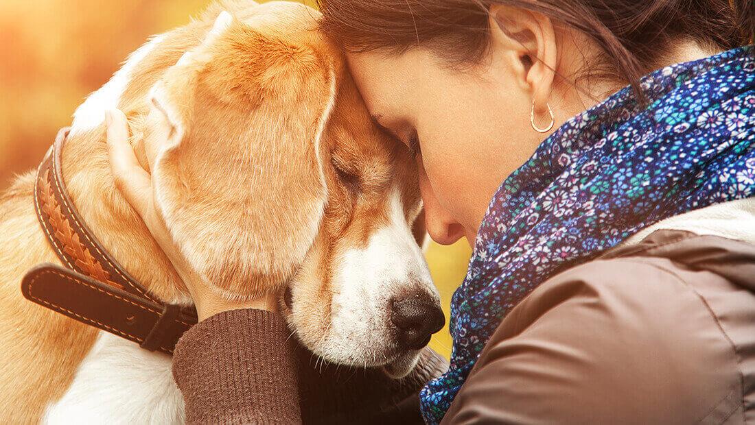 dueño abrazando a un perro