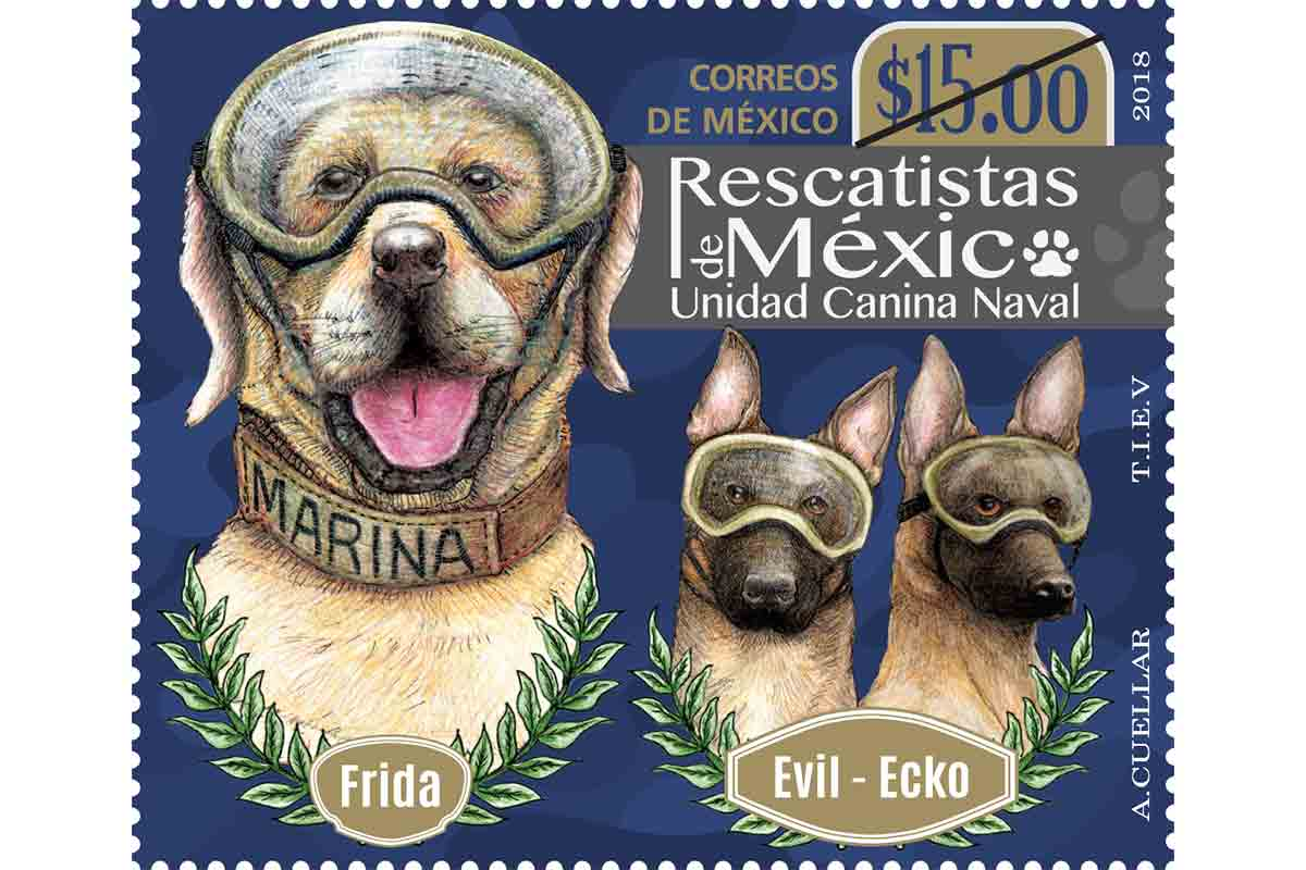 postal de Frida la rescatista