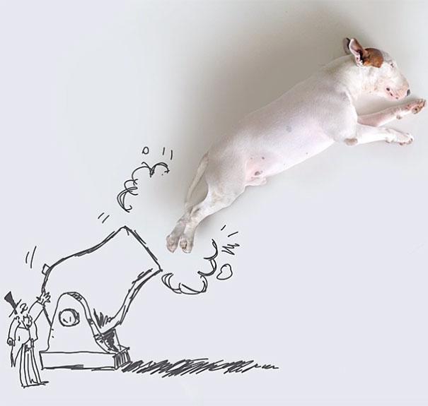 ilustración de bull terrier