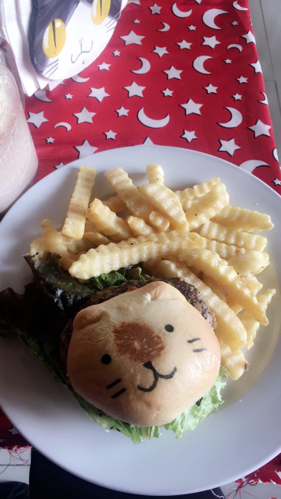 hamburguesa de gato