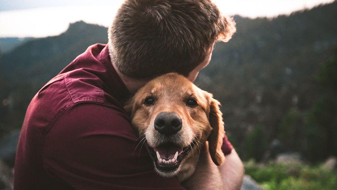 dueño abrazando a su perro