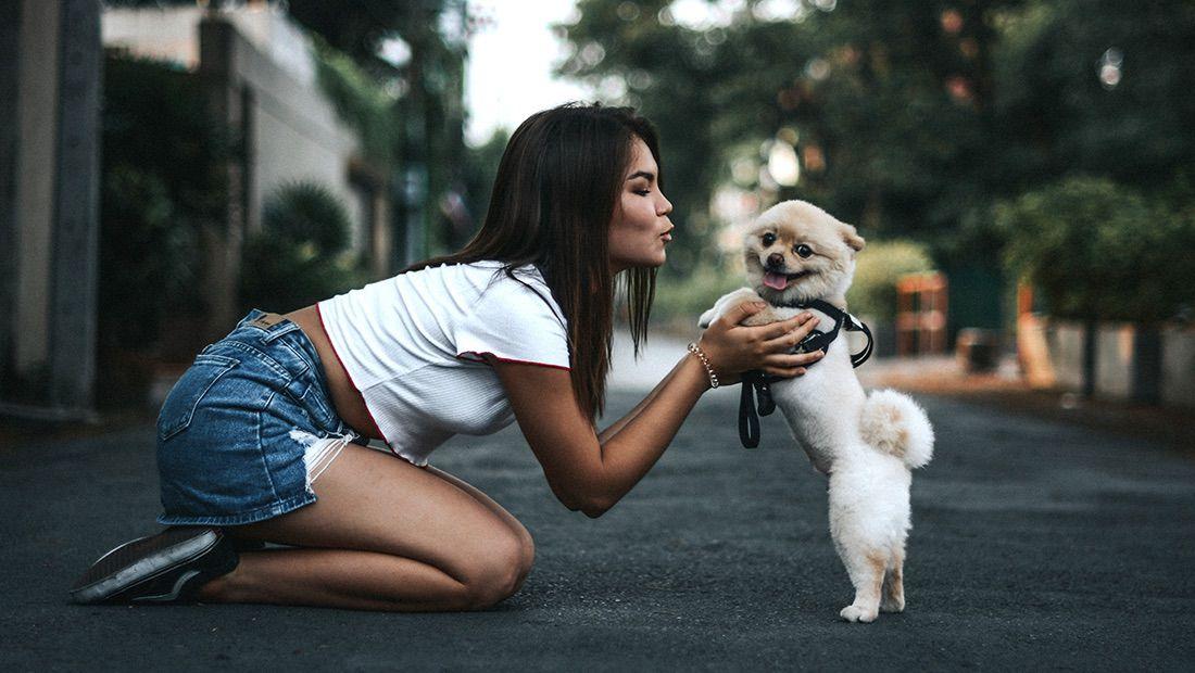 perro chiquito con su dueña
