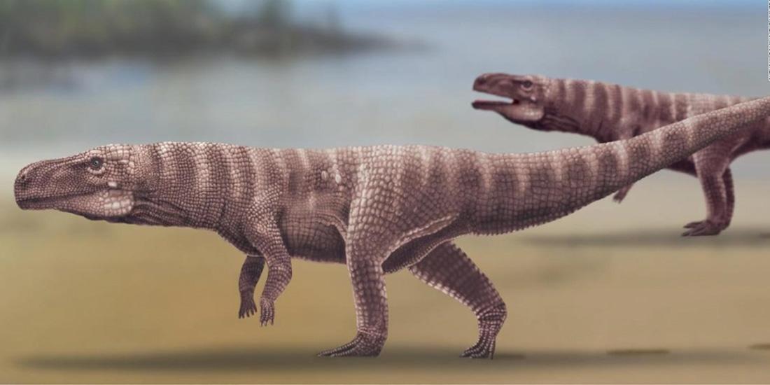 huellas enormes, revelan un secreto prehistórico