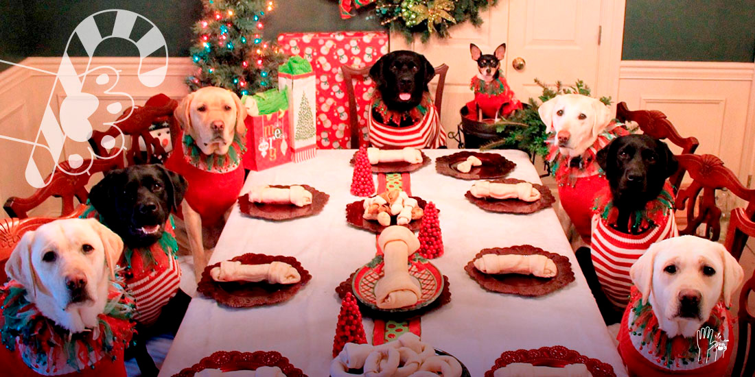 cena navideña para tu perro