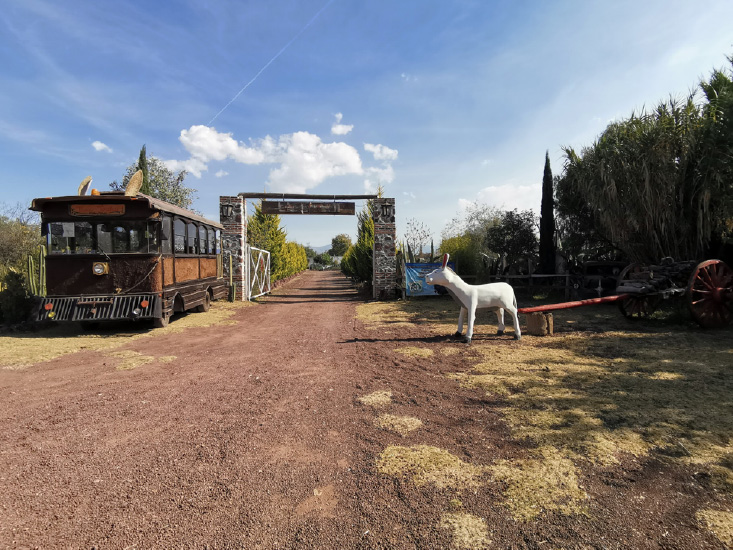 burrolandia santuario de burros