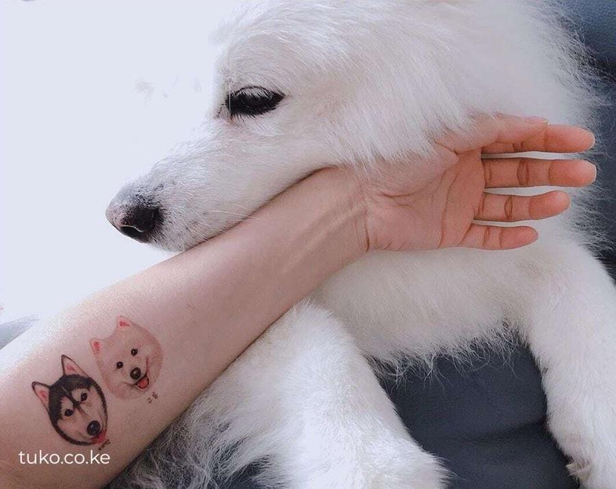 10 increíbles tatuajes de perros