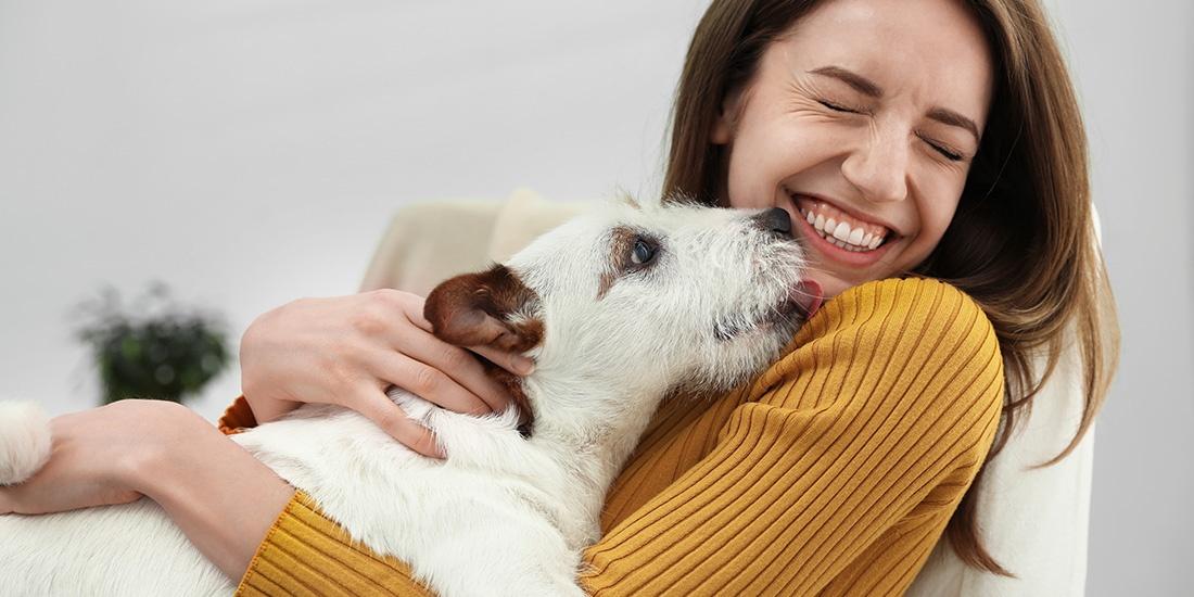 mal aliento puede significar enfermedad dental en tu perro
